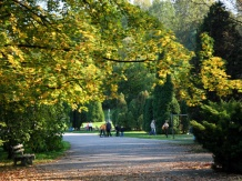 Park jesienią.
